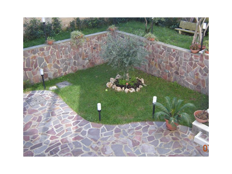 Aiuole Giardino Con Ulivo  Giardino con ulivo healthk.info